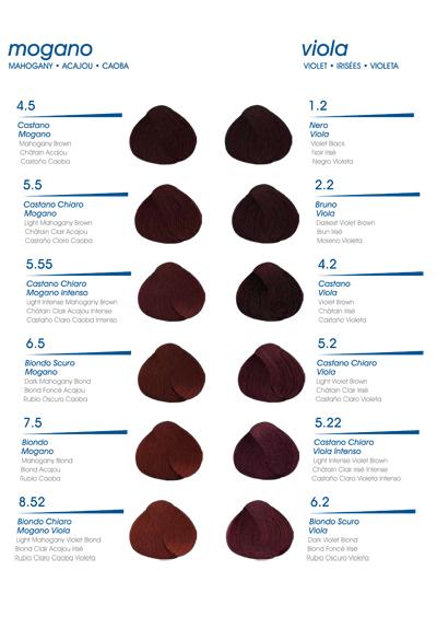 Coloration cheveux niveau 2