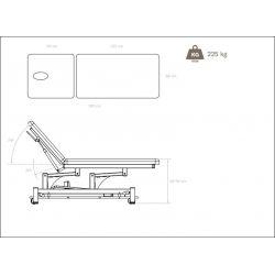 Watsu Blue Electric Treatment Table